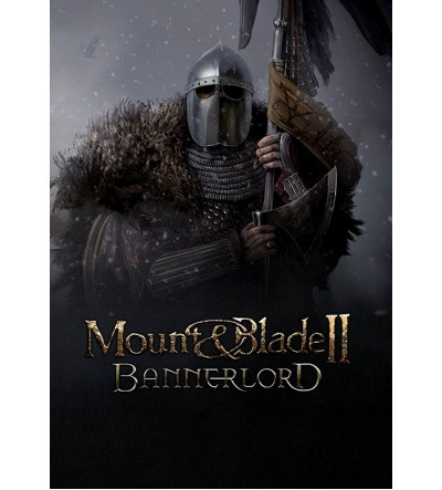 Mount & Blade 2: Bannerlord Beta